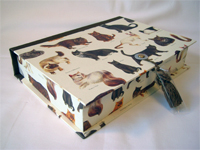 Rectangular Box with Cat Breeds paper