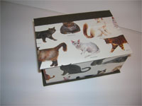 Square Box with Cat Breeds Paper