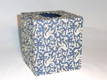 Tissue Box Cover with Florentine Griffins & Scrolls paper