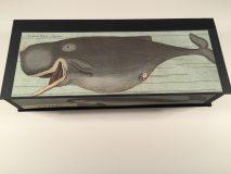 Whales Box