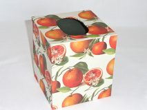 Tissue Box Cover with Botanical Oranges paper